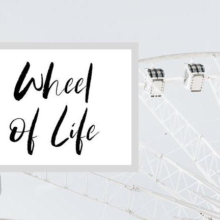 Wheel of Life Worksheet-image
